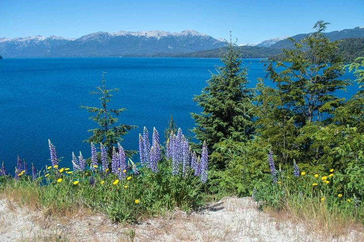 Lago Carlos Bariloche along the Seven Lakes Route north of Bariloche, Argentina   heneedsfood.com