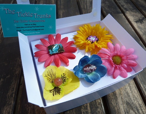 Pet Collar Accessory Pack by TheTickleTrunks on Etsy, $24.50