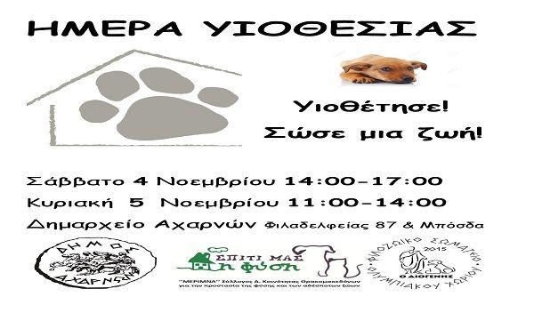 Τα φιλοζωικά σωματεία, «Μέριμνα» και «Φιλοζωικό Σωματείο Ολυμπιακού Χωριού» με την υποστήριξη του Δήμου Αχαρνών, διοργανώνουν «Ημέρα Υιοθεσίας» αδέσποτων ζώων, το Σάββατο 4 Νοεμβρίου(14:00 – 17:00) και την Κυριακή 5[...]