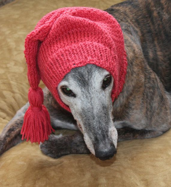 23 Best images about greyhound snoods on Pinterest For ...