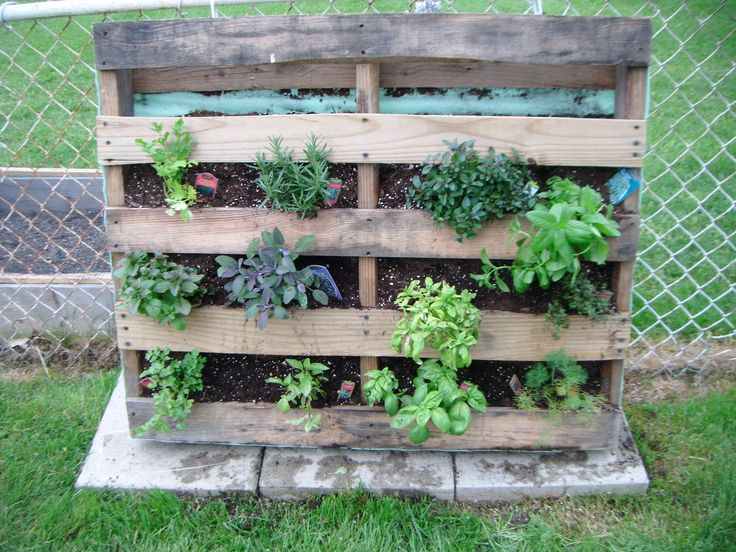 This is actually a part of my garden, currently ~ would definitely include it in my dream garden, too!!! . . . Herb Garden Pallet ~ cover back, bottom and sides of pallet with yard covering & secure with staples. Lie flat to fill with soil and plants. Leave lying flat for at least a week to take root and get packed in. Stand on bottom and get ready to enjoy lots of herbs!!! ;0)