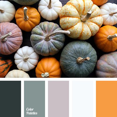 beige, brown, color of steel, color of tea, color of wet asphalt, color palette, dark gray, gray-brown, light gray, Orange Color Palettes, pumpkin, pumpkin color, selection of colors, shades of gray.
