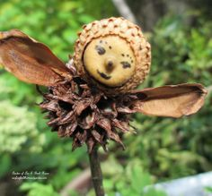 Using natural plant materials found in my yard, I created garden fairies for my fairy garden! No cost and cute as can be! See more pictures ...