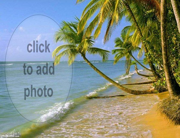 Tropical Island Beach Ambience Sound: 41 Best Images About Imikimi's Seasons On Pinterest