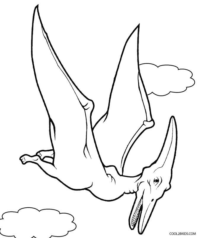 Pterodactyl Dinosaur Coloring Pages Dinosaur Coloring Pages