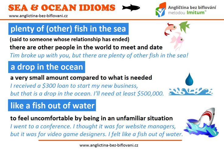 Anglické idiomy jsou populárním tématem. Dnes vám představíme ty, které souvisí s (pod)mořským světem.  #idioms #sea #ocean