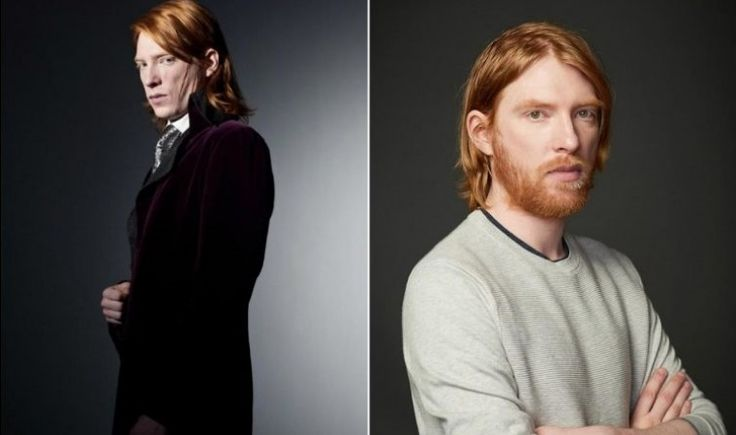 Harry Potter and the company 14 years later: how they look now
