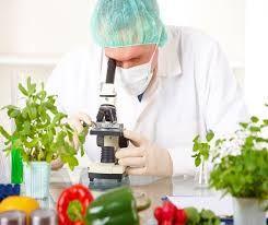 descubrir las diferentes reacciones químicas que suceden entre los alimentos