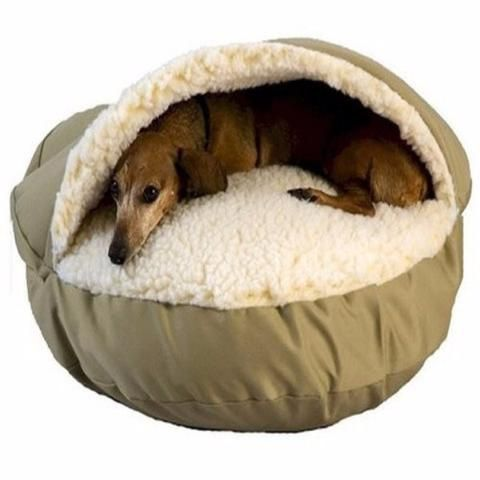 Pet supply dog bed
