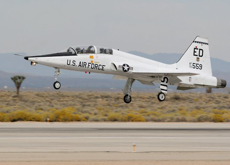 T-38 Talon (very fun to fly!)