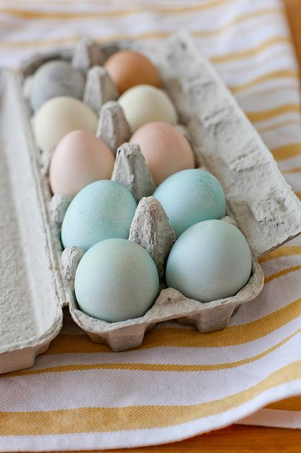 Natural Easter Egg dyes. Love the colours they make.