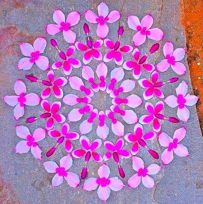 Mandalas tout en fleurs @ Le Petit Manuel
