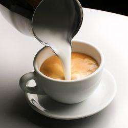 Poudre de lait hyperprotéinée pour café ou thé ✰ Polvere di latte per caffé o té ✰ Polvo de leche para cafè o tè