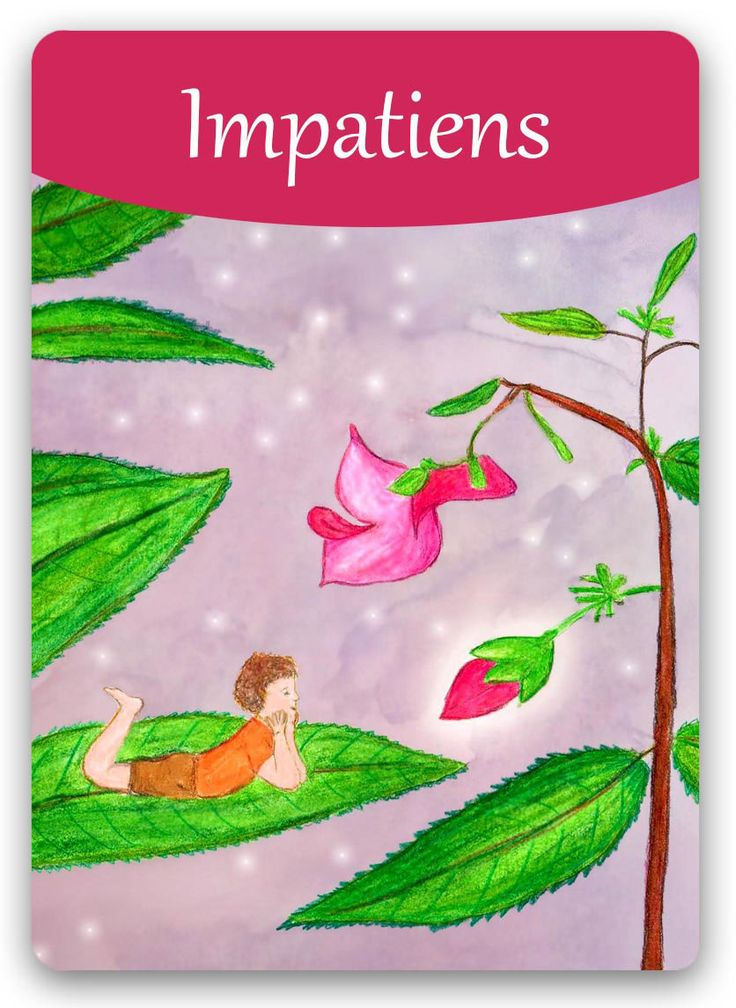 """Bach Flower: Impatiens – """"Take your time"""""""