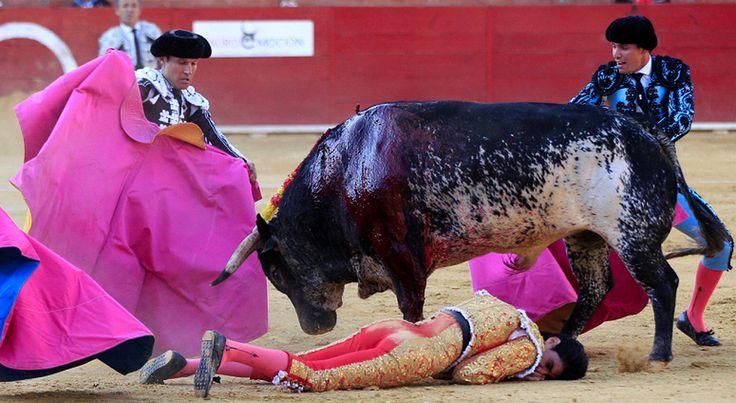 victor barrio | Torero Víctor Barrio muere tras cogida de un toro.