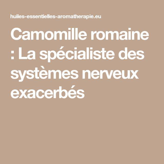 Camomille romaine : La spécialiste des systèmes nerveux exacerbés