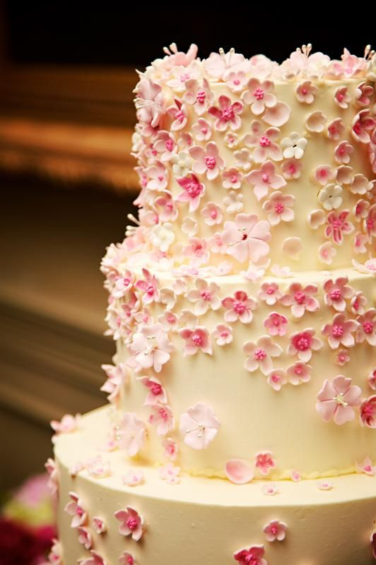 Simple and sweet! Ivory cake with light pink edible flowers