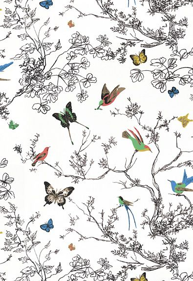 Birds and Butterflies Schumacher Fabric