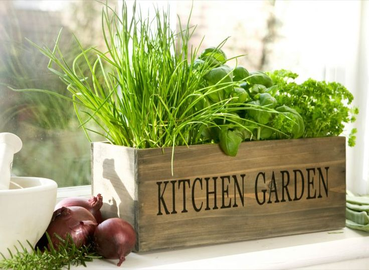 Indoor Herb Gardens and Salad Walls - Many Ideas Like this Country kitchen mini garden herb window planter.