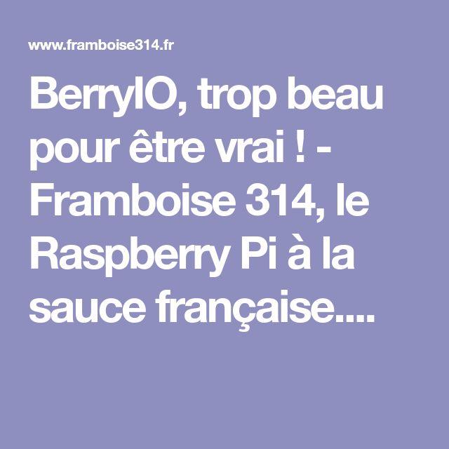 BerryIO, trop beau pour être vrai ! - Framboise 314, le Raspberry Pi à la sauce française....