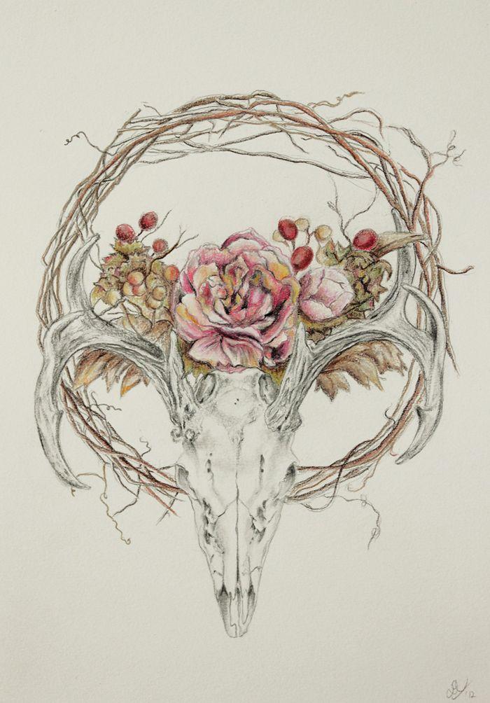 deer skull drawing - Google Search