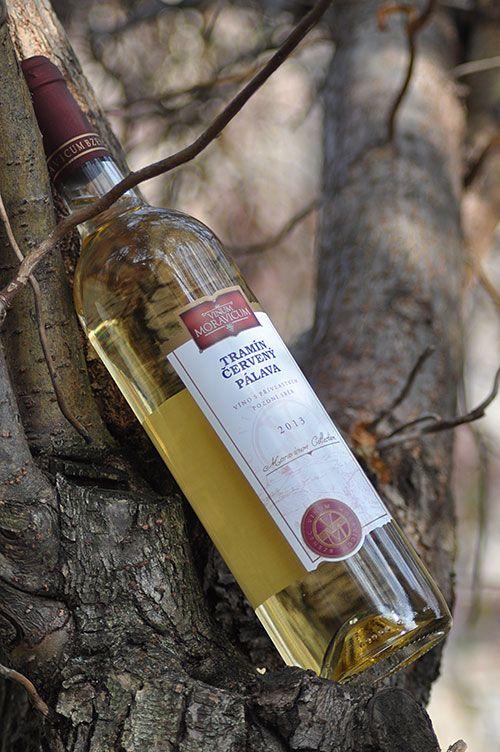 Bílé víno - Tramín červený Pálava Pozdní sběr - Vinum Moravicum a.s.