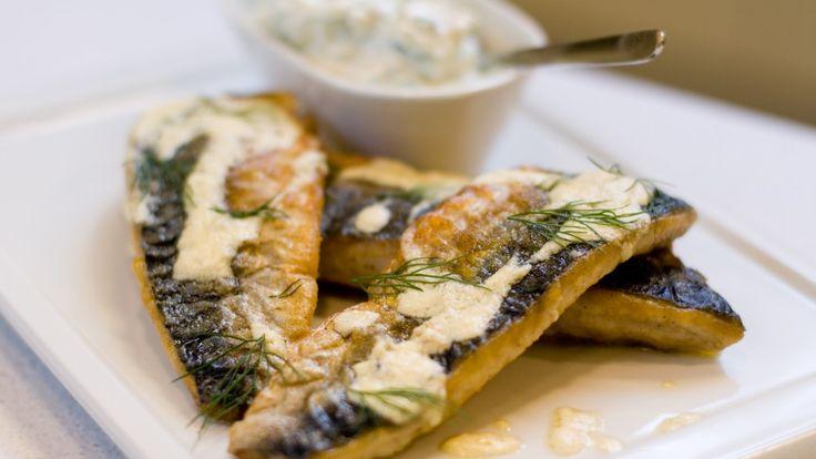 Stekt makrell med tzatziki. Oppskrift med video fra Gastronomisk institutt.