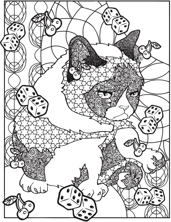 Creative Haven Grumpy Cat Hates Coloring Book Dover Publications