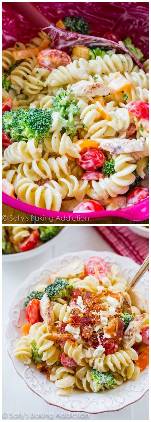 Creamy Chicken Pasta Salad made with Greek yogurt! Makes great leftovers.