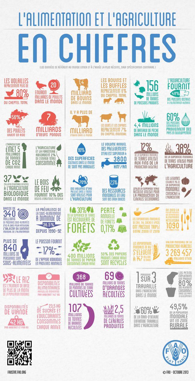 Environnement et développement durable - L'alimentation et l'agriculture en chiffres
