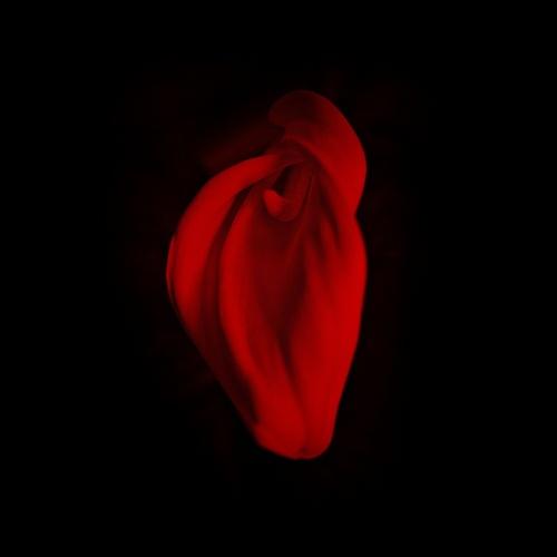 Corazón tan rojo