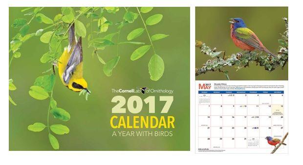 2017 calendar Cornell Lab