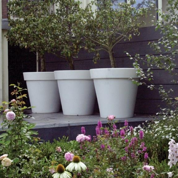 huge pots