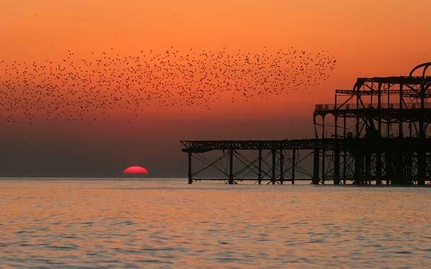 Sitting on the beach watching the sunset in Brighton is a perfect summers evening