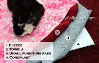 Guinea pig C and C cage tip: layer fleece with U-haul pads to reduce odor and extend time between cage changing