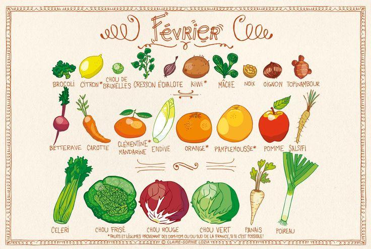 Comme chaque mois, nous vous proposons le calendrier des fruits et légumes de saison. Voici la liste tant attendue du mois deFévrier.
