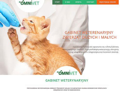 Webdesign: Omnivet - VET www.omnivet.pl #vet #webdesing #website #web #cat