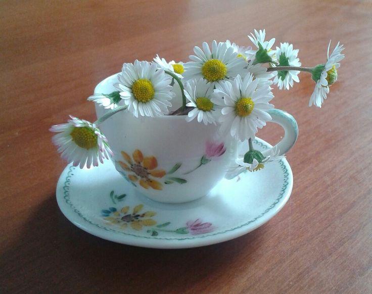The di fiori