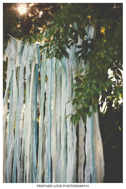 ribbon - perfect backdrop for a ceremony