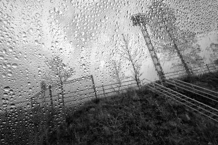 Litate era un paese di circa 6 mila abitanti situato a circa 40 chilometri dalla centrale nucleare di  Fukushima Daiichi. A causa dei venti, che durante i primi giorni dell'incidente spiravano verso queste zone,  e per l'alta concentrazione di piogge avvenute in quei giorni, Litate è uno dei luoghi più contaminati, ma la  popolazione è stata evacuata solo dopo quasi due mesi, a maggio 2011...