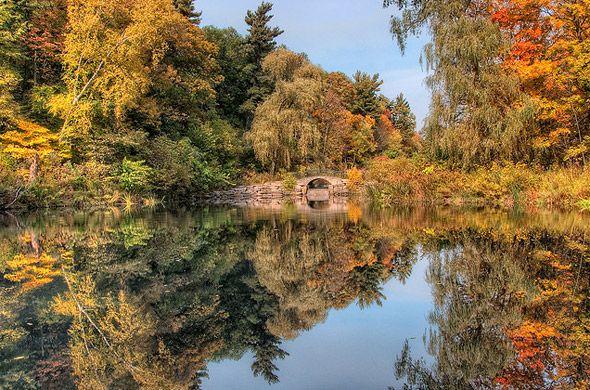 A fall scene in High Park, Toronto