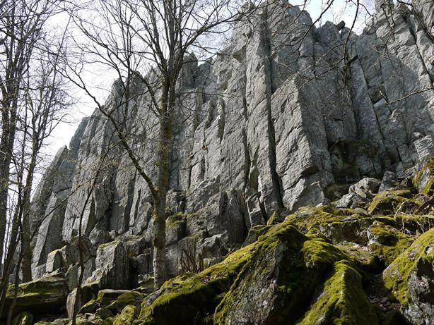 Hessisches Landesamt für Naturschutz, Umwelt und Geologie: Frühling 2012