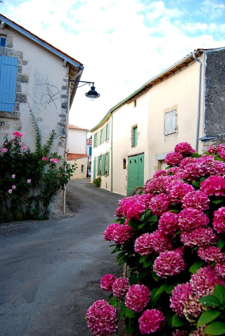 Vouvant, Pays de la Loire