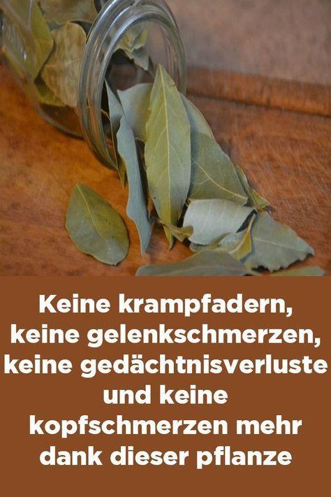 Keine krampfadern, keine gelenkschmerzen, keine gedächtnisverluste und keine kopfschmerzen mehr dank dieser pflanze