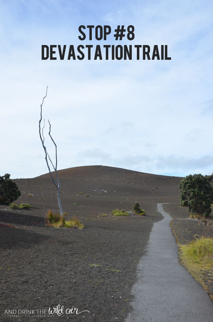 The need to knows the devastation trail is located along crater rim drive in hawaii