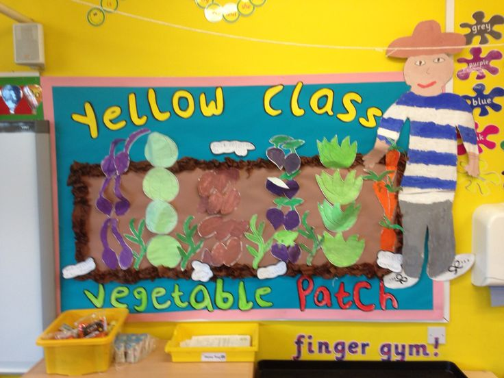 Our Oliver's Vegetables Display!