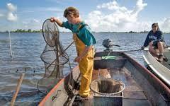 De laatste proffecionele visser van Heeg, samen met onze gasten aan het werk de paling binnen boord te halen. www.watersportcampingheeg.nl