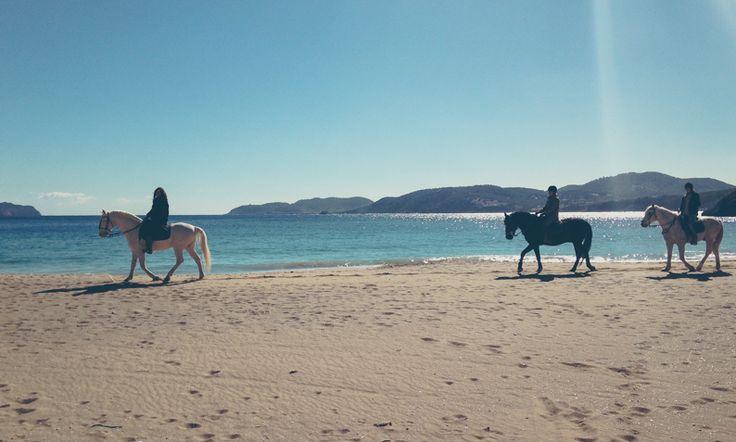 Op vakantie in de winter naar #Ibiza. #yourfuturepostcard #horeseriding #horsesonthebeach #paardrijden #strand