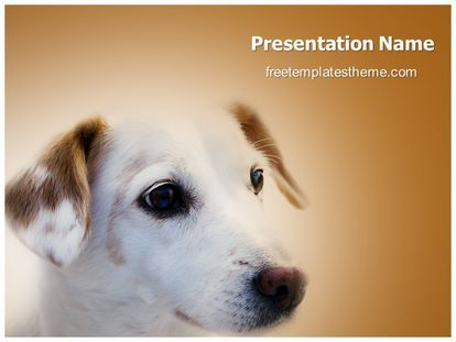 Dog and cat presentation template brettfranklin 14 best free wildlife animals powerpoint ppt templates images on presentation templates toneelgroepblik Choice Image