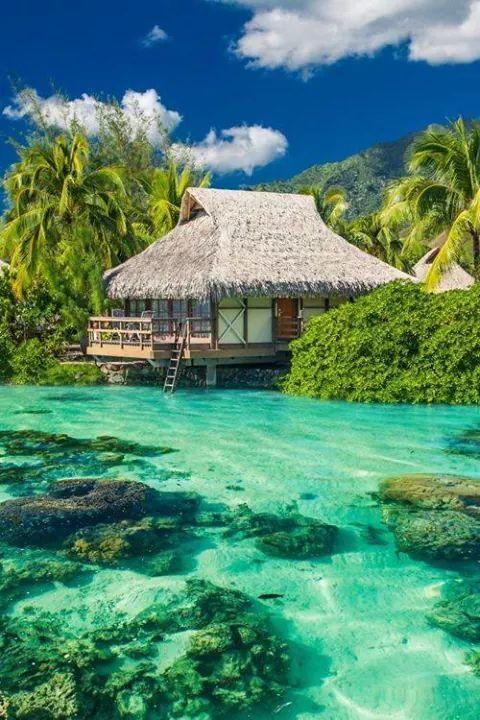 Maldives island  - via Sarut Boonchoopirach's photo on Google+